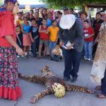 Danza del Tigre y el Venado